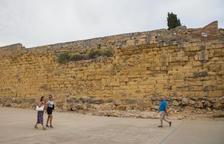 La Reial Societat Arqueològica de Tarragona ve «prioritario» retirar los arbustos de la Muralla