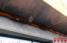 Rescaten un gat que ha caigut a una xarxa protectora d'un edifici a Tarragona