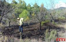 Un incendio en Siurana quema 150 m2 de un campo de almendros
