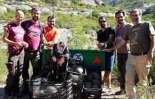 Liberan un centenar de tortugas mediterráneas en el Parque Natural de Montsant