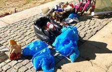 L'acció 'Netegem la platja' recull 20 quilos de brossa del Regueral de Cambrils