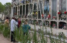 El Cementiri de Reus habilita més aparcaments i tindrà busos gratuïts per Tots Sants
