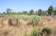 L'AVV Parc Francolí vol millores al barri abans de construir-hi el CPO